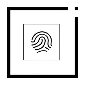 Išskirtinumas ikona
